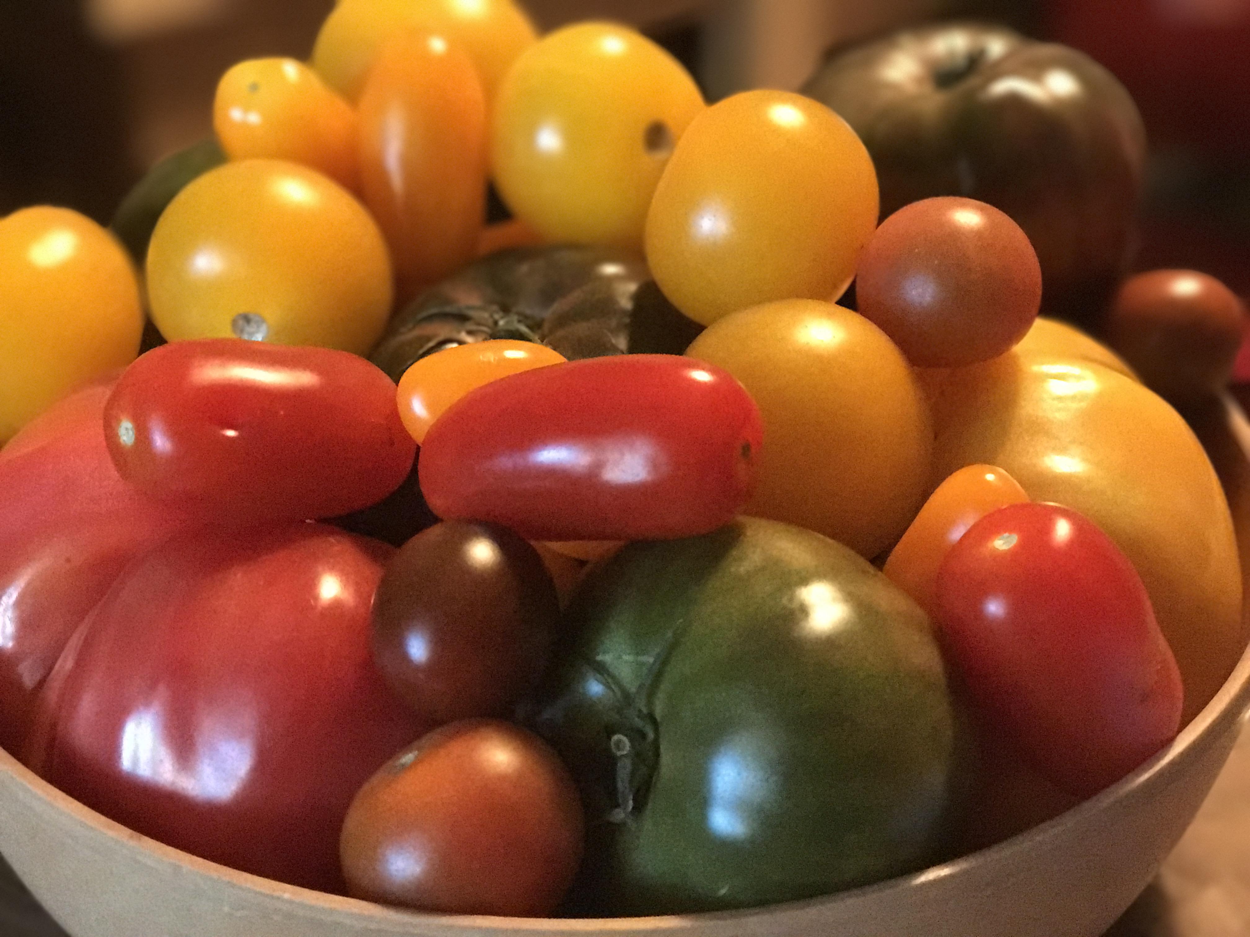 Local Grown Florida Heirloom Tomatoes