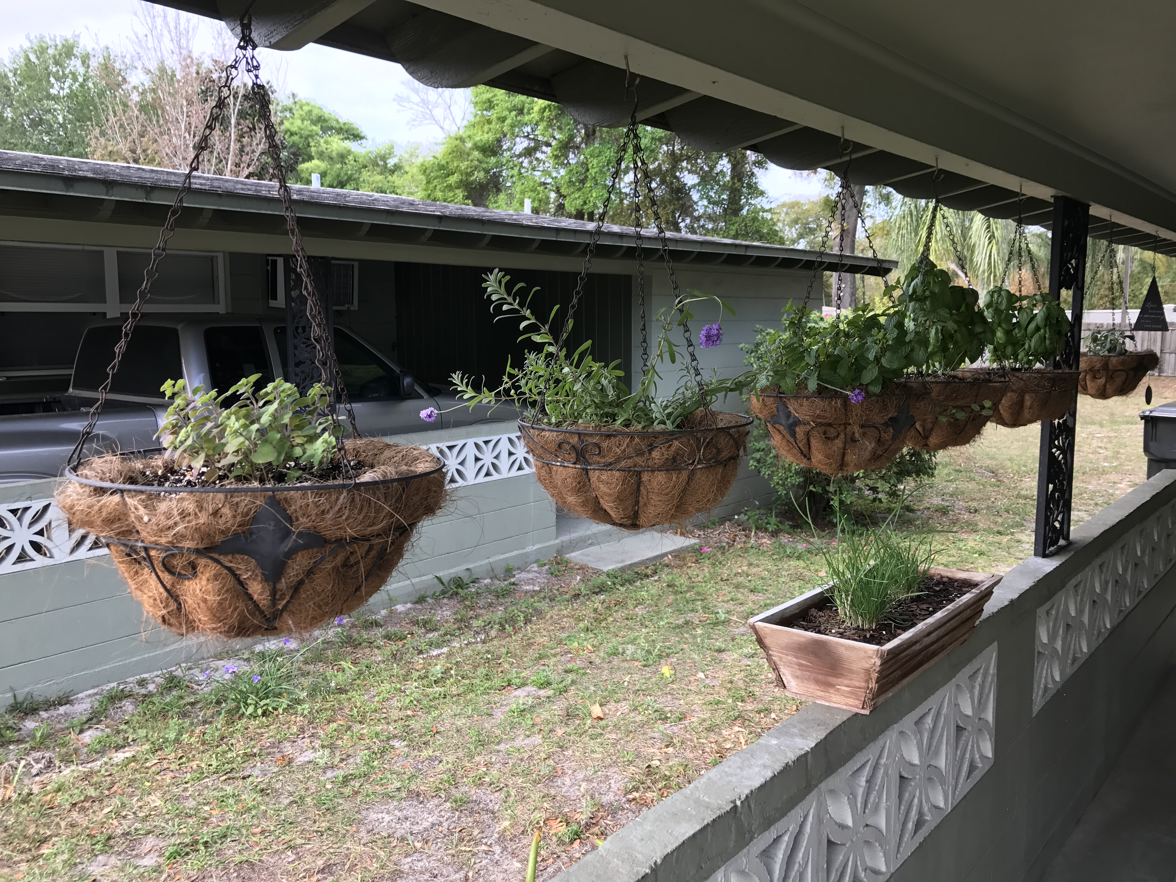 My Hanging Herb Garden
