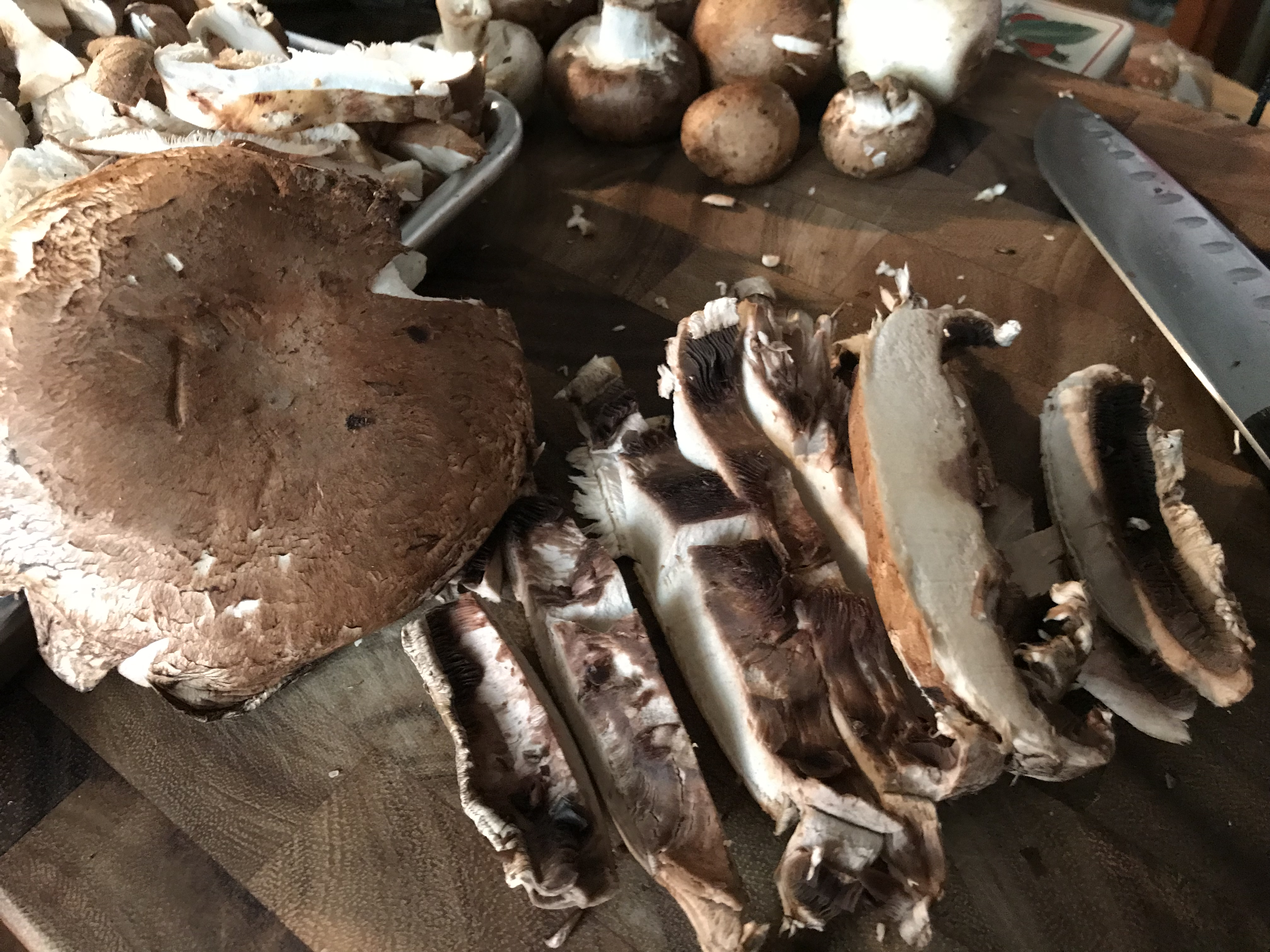 Portobello Mushroms
