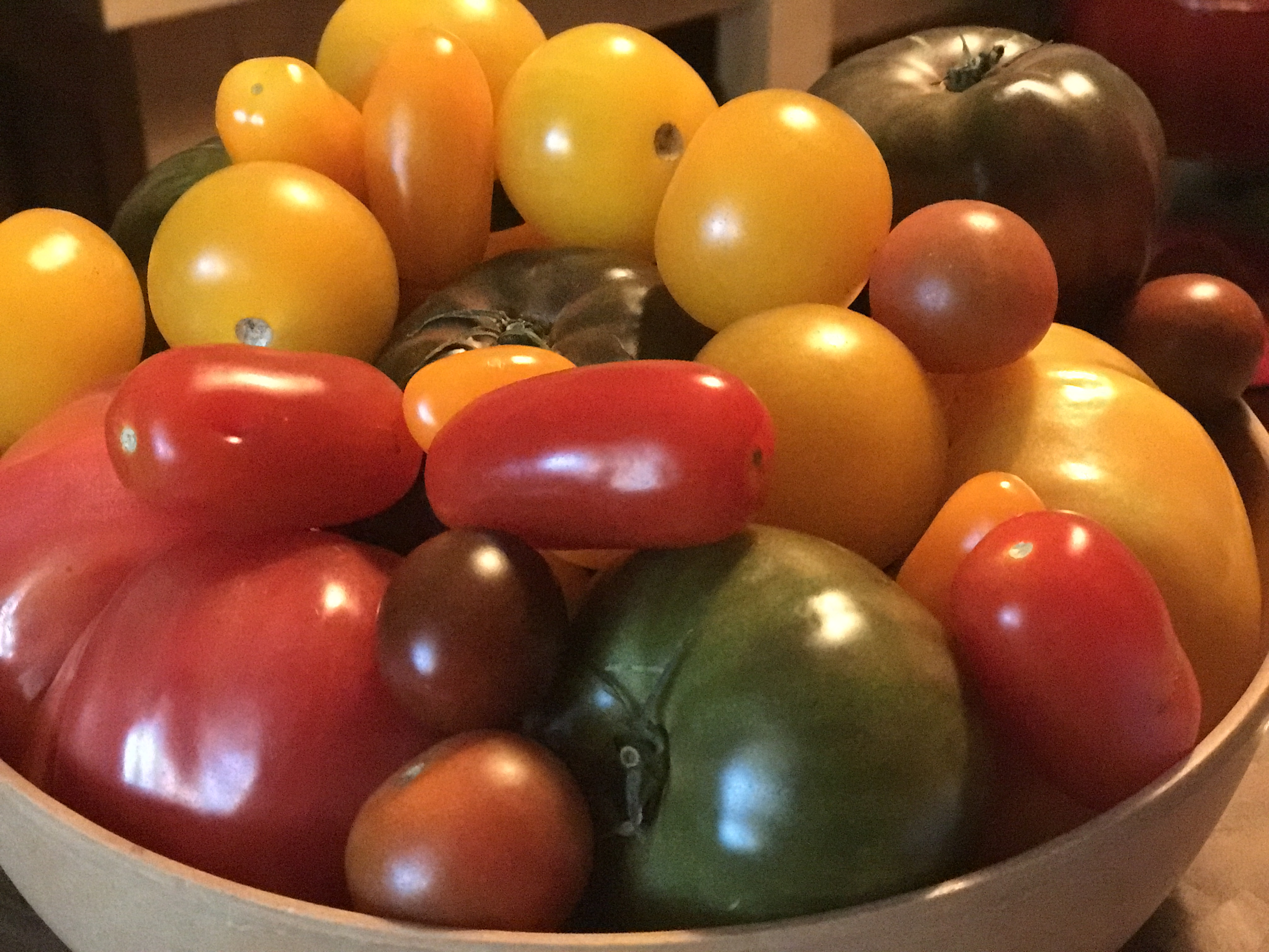 Local Florida Heirloom Tomatoes