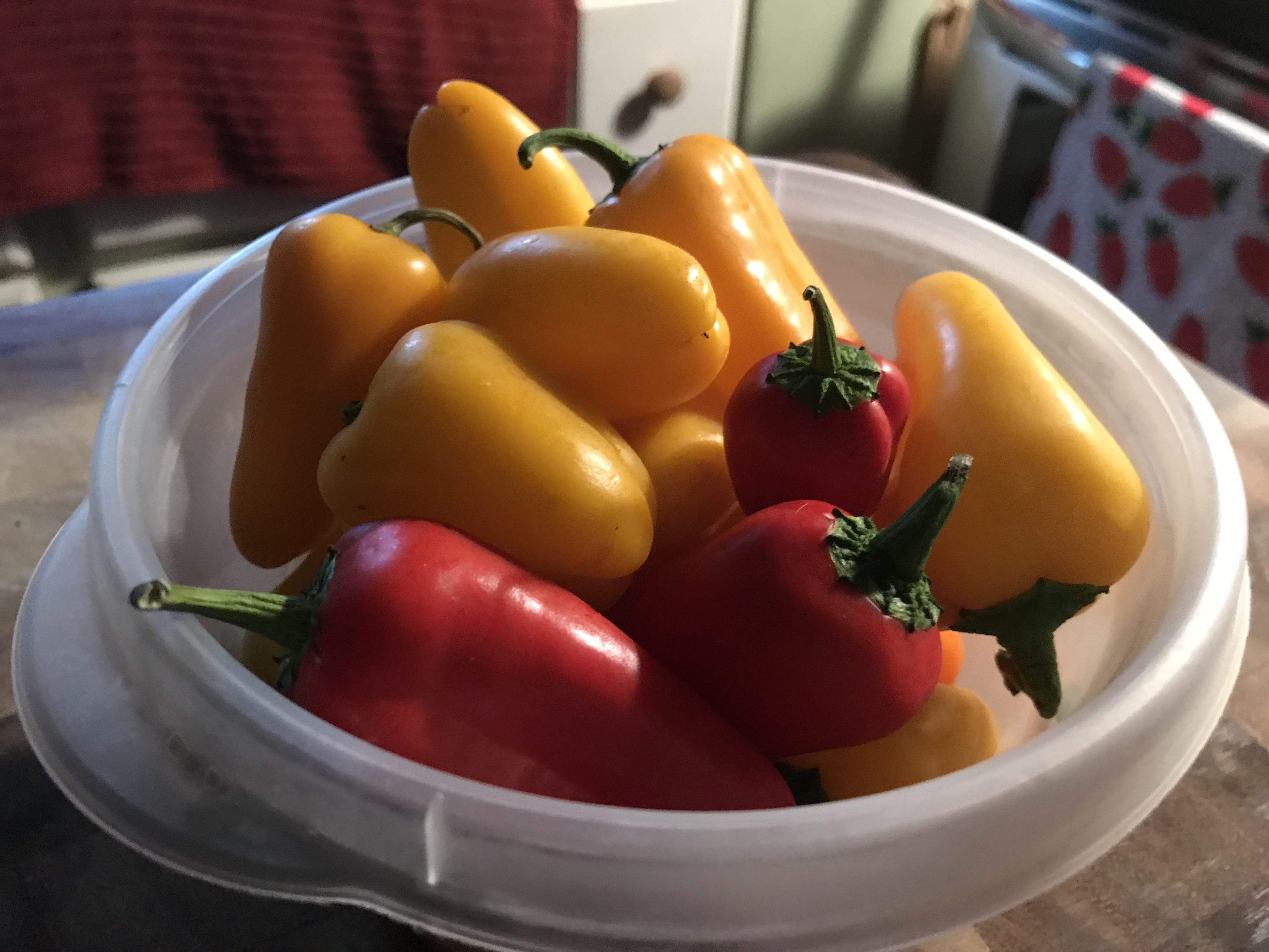 Mini Sweet Bell Peppers